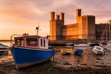 WAL7392AW Europe, United Kingdom, Wales, Caernarfon Castle