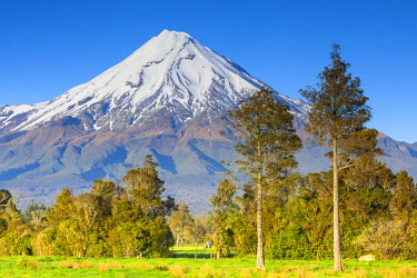 NZ01259 Mount Taranaki (Egmont), Taranaki, North Island, New Zealand