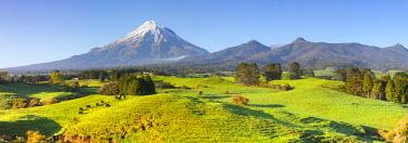 NZ01271 Picturesque Mount Taranaki (Egmont) and rural landscape, Taranaki, North Island, New Zealand