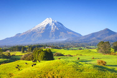 NZ01272 Picturesque Mount Taranaki (Egmont) and rural landscape, Taranaki, North Island, New Zealand