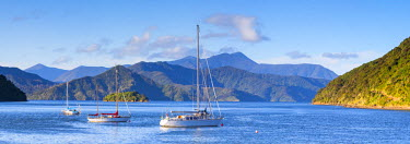 NZ02407 Yachts anchored on the idyllic Queen Charlotte Sound, Picton, Marlborough Sounds, South Island, New Zealand