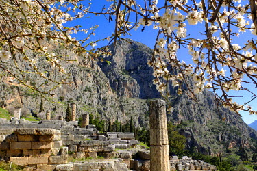 Greece, Phocis, Delphi, UNESCO World Heritage Site, Delphi was the site of a pan-Hellenic sanctuary where the oracle of Apollo spoke through his prophetess, the Pythia