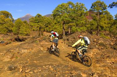 SPA5442AW Mountain Biker, Teide National Park, Tenerife, Canaries, Spain (MR)
