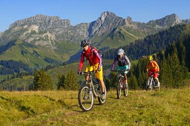 SWI7384AW Biking, Saanenland, Switzerland (MR)