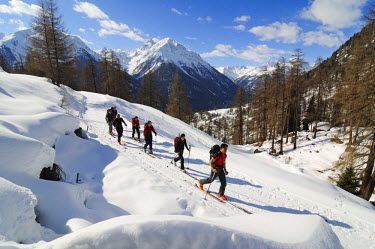 SWI7409AW Ski Touring, Engadin, Grisons, Switzerland (MR)