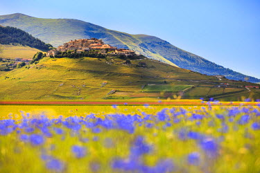 FVG001778 Italy, Umbria, Village of Castelluccio seen above fields of cornflowers