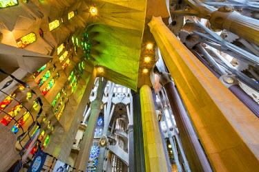 SPA5533AW Interior, Sagrada Familia, Barcelona, Catalonia, Spain