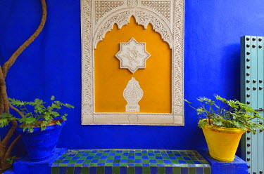 MOR2170AW The blue and yellow contrast found in the Majorelle garden. Marrakech, Morocco