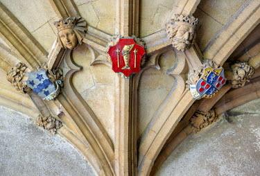 ENG11573AW Europe, United Kingom, England, Oxfordshire, Oxford, Christ Church University,