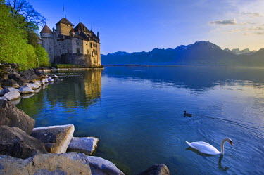 HMS0581701 Switzerland, Canton of Vaud, Leman lake, Chillon castle at the south of Montreux