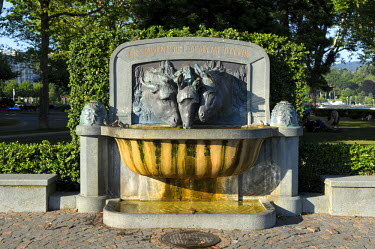 HMS0566998 Switzerland, Canton of Vaud, Lausanne, three fountain heads of donkeys called the Academy