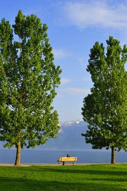 HMS0625043 Switzerland, Canton of Vaud, Lake Geneva, Cully, the lake promenade