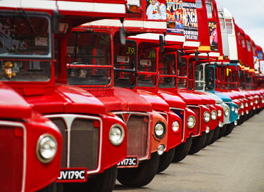 ENG11653AW Iconic Routemasters at their 60th anniversary, Finsbury Park, London, UK