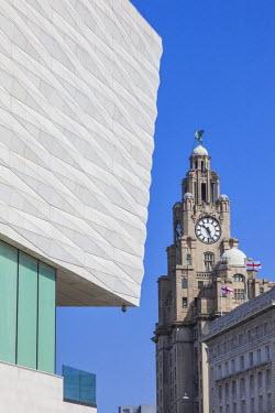 TPX45575 England, Merseyside, Liverpool, Museum of Liverpool