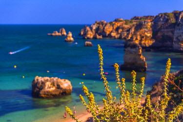 PT06163 Portugal, Algarve, Lagos, Dona Ana Beach (Praia Dona Ana)