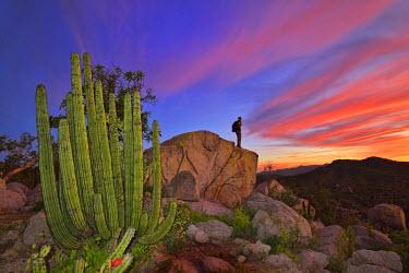 MEX1461AW Mountains near La Ventanaz, Baja California, Mexico