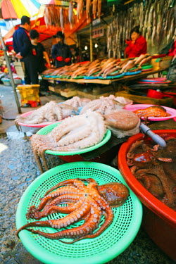 SKO0154 Asia, Republic of Korea, South Korea, Busan, Jagalchi fish market