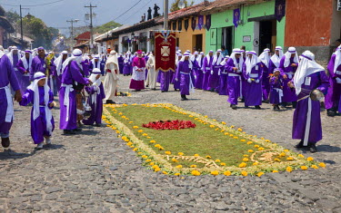 SA10CCE0005 Antigua, Guatemala. An alfombra (carpet) of flowers, pine needles, and other traditional materials decorates the street in advance of the passage of a procession during Holy Week, La Semana Santa.