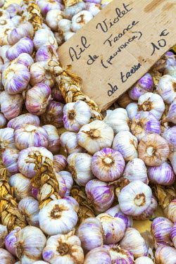 FRA8408AW France, Provence Alps Cote d'Azur, Saint Remy de Provence. Garlic for sale at local market