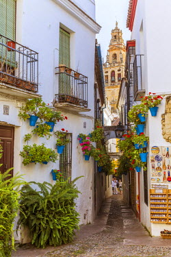 SPA5878AW Spain, Andalusia, Cordoba. Calleja de las flores (street of the flowers) in the old town