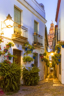 SPA5884AW Spain, Andalusia, Cordoba. Calleja de las flores (street of the flowers) in the old town, at dusk