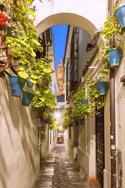 SPA5886AW Spain, Andalusia, Cordoba. Calleja de las flores (street of the flowers) in the old town, at dusk
