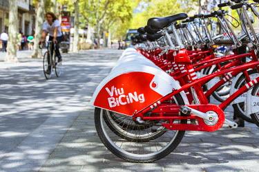 SPA6029AW Spain, Catalonia, Barcelona. La Rambla, public bicycles lined up