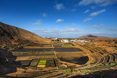 SPA6215AW View from Mirador Guiguan, Mancha Blanca, Lanzarote, Canary Islands, Spain