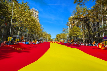 SPA6269AW Huge spanish and catalan flag unrolled in Passeig de Gracia during the celebration of the Spain�s National Day on October 12, Barcelona, Catalonia, Spain
