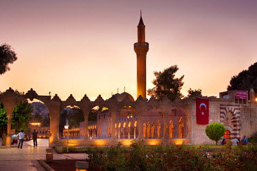 HMS1327305 Turkey, South Eastern Anatolia, Sanliurfa, Pool of Sacred Fish where Abraham was thrown into the fire by Nimrod and God turned the fire into water. Risvaniye Mosque and Madrasa