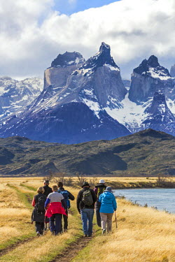 CHI8997 Chile, Torres del Paine, Magallanes Province. Hikers walk along a trail in the Patagonian steppe with the magnificent Paine Massif towering above them.