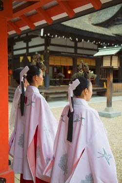 JAP0684AW Shrine maidens and priest at traditional wedding ceremony at Shinto shrine of Sumiyoshi Taisha, Osaka, Kansai, Japan