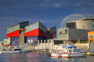 JAP0708AW Osaka Aquarium, Suntory Museum and Ferris wheel, Tempozan, Osaka, Kansai, Japan