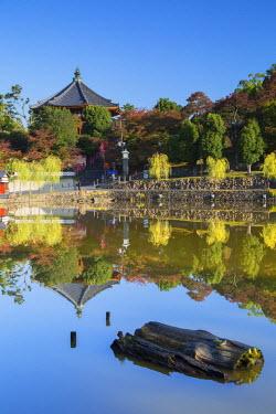 JAP0717AW Pagoda at Kofuku-ji Temple (UNESCO World Heritage Site), Nara, Kansai, Japan
