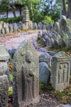 JAP0737AW Holy stones at Gangoji Temple (UNESCO World Heritage Site), Nara, Kansai, Japan
