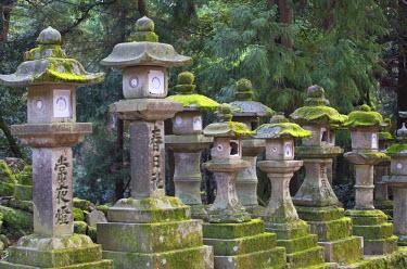 JAP0744AW Stone lanterns at Kasuga Taisha Shrine (UNESCO World Heritage Site) at dusk, Nara, Kansai, Japan
