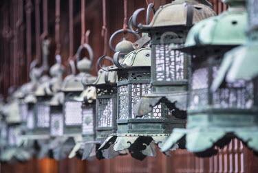 JAP0745AW Lanterns at Kasuga Taisha Shrine (UNESCO World Heritage Site) at dusk, Nara, Kansai, Japan