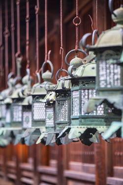 JAP0746AW Lanterns at Kasuga Taisha Shrine (UNESCO World Heritage Site) at dusk, Nara, Kansai, Japan