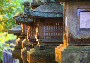 JAP0747AW Stone lanterns at Kasuga Taisha Shrine (UNESCO World Heritage Site) at dusk, Nara, Kansai, Japan