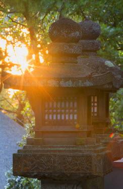 JAP0748AW Stone lanterns at Kasuga Taisha Shrine (UNESCO World Heritage Site) at dusk, Nara, Kansai, Japan