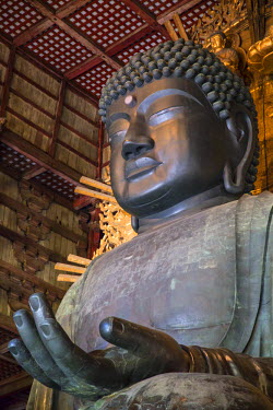 JAP0762AW The Daibutsu (Great Buddha) inside Todaiji Temple (UNESCO World Heritage Site), Nara, Kansai, Japan