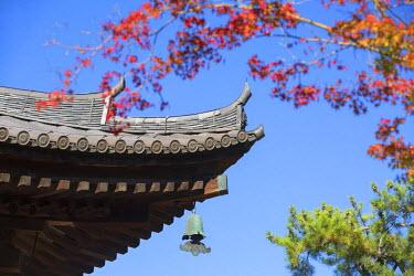 JAP0770AW Toshodaiji Temple (UNESCO World Heritage Site), Nara, Kansai, Japan