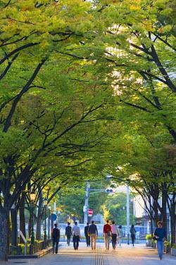 JAP0786AW People walking through park on Naganoshima island, Osaka, Kansai, Japan