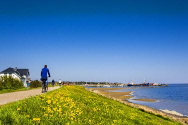 GER8280AW Cyclist at wadden sea, Wittdün, Amrum Island, Northern Frisia, Schleswig-Holstein, Germany