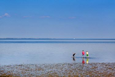 GER8294AW People at wadden sea, Amrum Island, Northern Frisia, Schleswig-Holstein, Germany