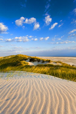 GER8246AW Dunes, Amrum Island, Northern Frisia, Schleswig-Holstein, Germany