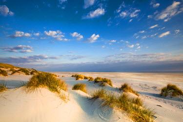 GER8247AW Dunes, Amrum Island, Northern Frisia, Schleswig-Holstein, Germany
