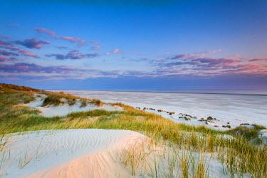 GER8248AW Dunes at dusk, Amrum Island, Northern Frisia, Schleswig-Holstein, Germany