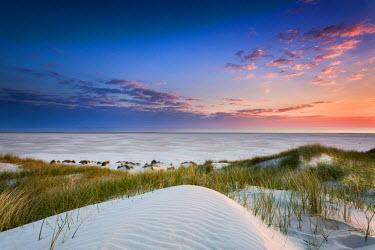 GER8249AW Dunes at dusk, Amrum Island, Northern Frisia, Schleswig-Holstein, Germany