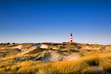 GER8250AW Lighthouse in the dunes, Amrum Island, Northern Frisia, Schleswig-Holstein, Germany